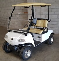 Express 2 Golf Cart with Lithium Battery